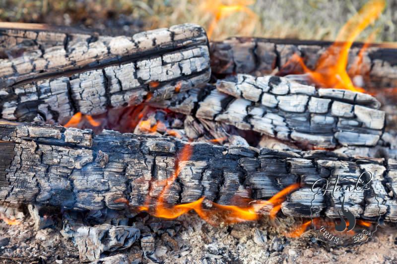 Smoking wood